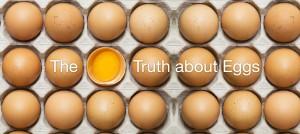 Eggs-Blog-v1-01